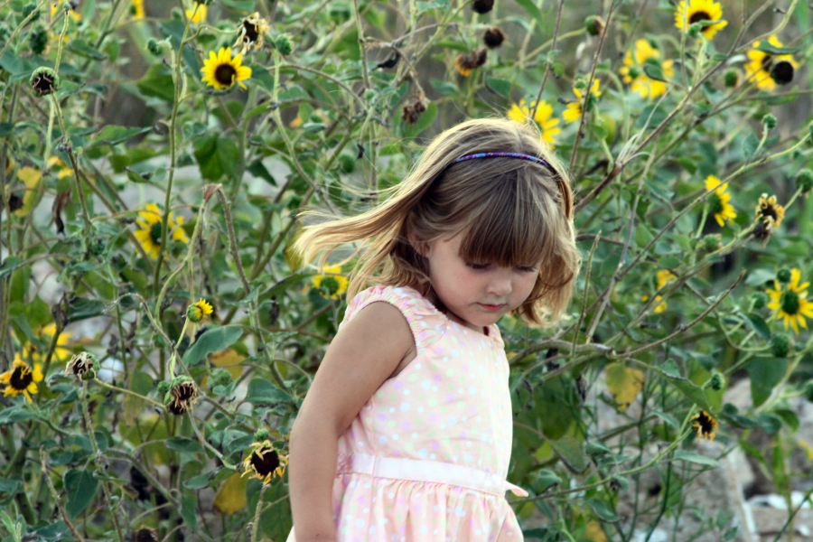 Child in field of sunflowers